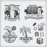 Grupo de ícones dos cocktail, de etiquetas e de elementos do projeto Imagens de Stock Royalty Free