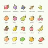 Grupo de ícones dos frutos e das bagas Foto de Stock