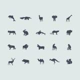 Grupo de ícones dos mamíferos ilustração do vetor