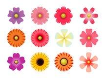 Grupo de ícones lisos da flor do ícone na silhueta isolada no branco para etiquetas, etiquetas, etiquetas, papel de papel de embr fotografia de stock royalty free