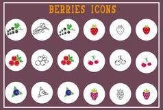 Grupo de ícones lisos das bagas - colorfull, Imagens de Stock Royalty Free