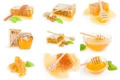 Grupo de abeja de la miel aislado en un recorte blanco del fondo Fotos de archivo libres de regalías