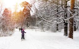 Grupo de adolescencias en el esquí del campo a través Fotos de archivo libres de regalías