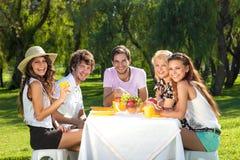 Grupo de adolescentes novos em um piquenique fotos de stock