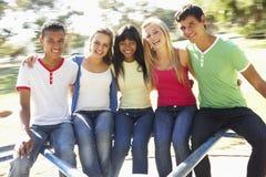 Grupo de adolescentes que se sientan en cruce giratorio del patio Foto de archivo