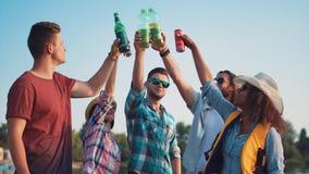 Grupo de adultos jovenes felices que se tuestan Fotografía de archivo libre de regalías