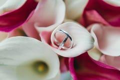 Grupo de alianças de casamento em flores cor-de-rosa e brancas Foto de Stock Royalty Free