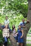 Grupo de amigos adolescentes en parque Imágenes de archivo libres de regalías