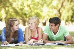 Grupo de amigos adolescentes que estudian en parque Foto de archivo libre de regalías