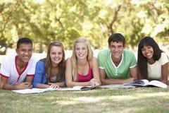 Grupo de amigos adolescentes que estudian en parque Fotografía de archivo