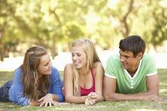 Grupo de amigos adolescentes que se divierten en parque Fotografía de archivo
