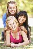 Grupo de amigos adolescentes que se divierten en parque Imagen de archivo libre de regalías
