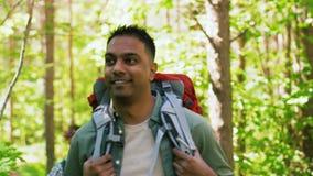 Grupo de amigos con las mochilas que caminan en bosque almacen de metraje de vídeo