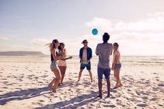 Grupo de amigos em férias da praia Fotos de Stock Royalty Free