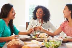 Grupo de amigos fêmeas que apreciam a refeição em casa fotografia de stock royalty free