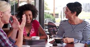 Grupo de amigos femeninos que se sientan en la charla de la cafetería almacen de video