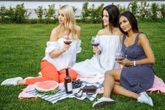 Grupo de amigos jovenes felices el vacaciones que gozan del vino en la comida campestre imagen de archivo