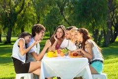 Grupo de amigos jovenes que meriendan en el campo en un parque Fotos de archivo libres de regalías