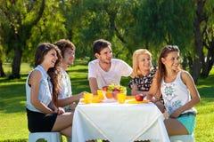 Grupo de amigos jovenes que tienen una comida campestre Fotografía de archivo libre de regalías