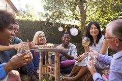Grupo de amigos maduros que apreciam bebidas no quintal junto fotografia de stock royalty free