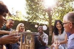 Grupo de amigos maduros que apreciam bebidas no quintal junto fotos de stock