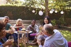 Grupo de amigos maduros que apreciam bebidas no quintal junto foto de stock royalty free