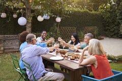 Grupo de amigos maduros que apreciam a refeição exterior no quintal foto de stock royalty free