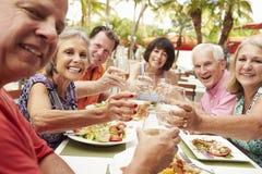 Grupo de amigos mayores que disfrutan de la comida en restaurante al aire libre imagenes de archivo