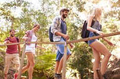 Grupo de amigos na caminhada que cruza a ponte de madeira na floresta Imagens de Stock Royalty Free