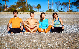 Grupo de amigos na praia Imagens de Stock Royalty Free