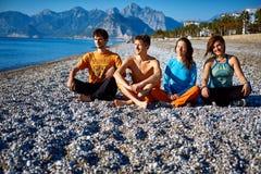 Grupo de amigos na praia Imagem de Stock Royalty Free