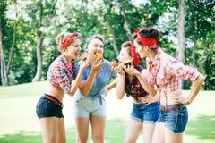 Grupo de amigos no parque que tem o partido do divertimento Meninas alegres com bolos nas mãos Estilo retro Fotografia de Stock