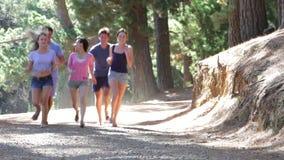 Grupo de amigos novos que correm através do campo vídeos de arquivo