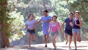 Grupo de amigos novos que correm através do campo filme