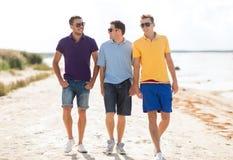 Grupo de amigos que andam na praia Fotos de Stock Royalty Free