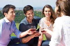Grupo de amigos que apreciam o vinho Fotografia de Stock Royalty Free