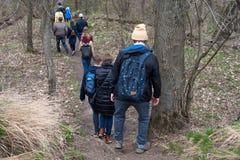 Grupo de amigos que caminan con las mochilas en bosque de la primavera de la parte posterior Backpackers que caminan en el bosque Imagen de archivo libre de regalías