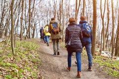 Grupo de amigos que caminan con las mochilas en bosque de la primavera de la parte posterior Backpackers que caminan en el bosque Fotos de archivo libres de regalías