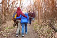 Grupo de amigos que caminan con las mochilas en bosque de la primavera de la parte posterior Backpackers que caminan en el bosque Foto de archivo