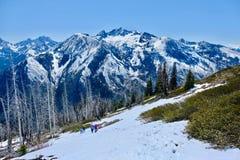 Grupo de amigos que caminham nas montanhas Imagens de Stock
