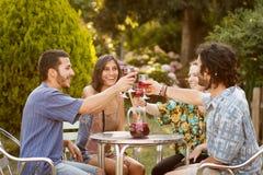 Grupo de amigos que comem um brinde Imagem de Stock Royalty Free