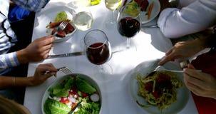 Grupo de amigos que disfrutan de la comida en el almuerzo al aire libre almacen de metraje de vídeo