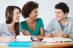 Grupo de amigos que estudam junto Imagens de Stock