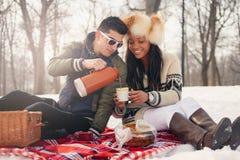 Grupo de amigos que gozan en la nieve en invierno Imágenes de archivo libres de regalías