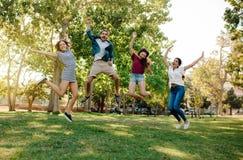 Grupo de amigos que gozan en un parque imagen de archivo libre de regalías