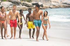 Grupo de amigos que interagem um com o otro ao andar na praia fotografia de stock royalty free