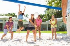 Grupo de amigos que jogam o voleibol no jardim Foto de Stock