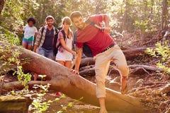 Grupo de amigos que saltan sobre tronco de árbol en paseo del campo Fotos de archivo