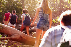 Grupo de amigos que saltan sobre tronco de árbol en paseo del campo imagen de archivo