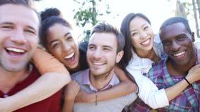 Grupo de amigos que se divierten junto al aire libre metrajes
